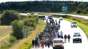 Migrants on E45 freeway, Padborg, heading to Sweden (--bbc.co.uk)