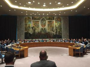 UN Security Council meeting, New York, July 29, 2015