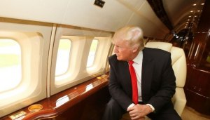 Donald Trump (--linkedin.com)